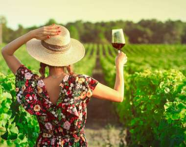 Heard it through the grapevine - putting the cork in famous wine myths