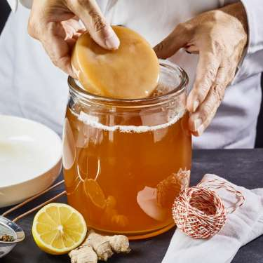 Kombucha's slimy scoby could help clean up NZ's rivers