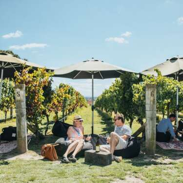 The good life – a tour of Hawke's Bay's best cellar doors