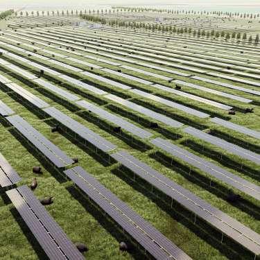 NZ's largest solar farm gets consent