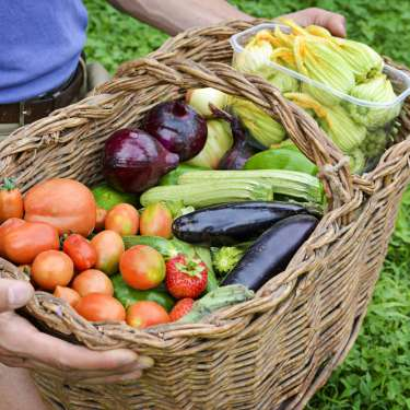 Farm direct won't fix our food system. Could new retail entrepreneurs?