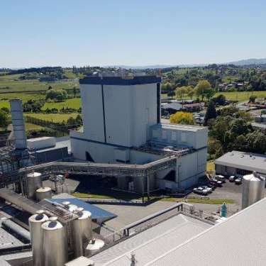 Fonterra says gas, wood best low-carbon options for processing