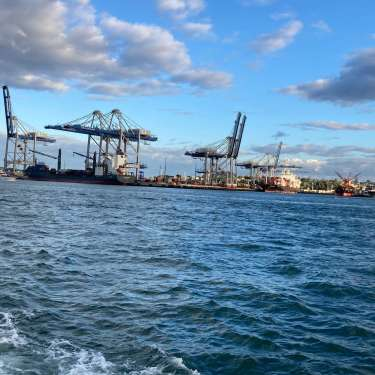 Union calls for resignation of Ports of Auckland board