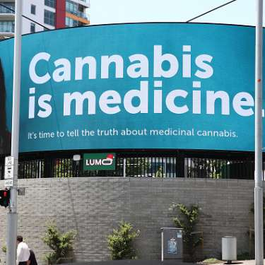 BOTTOM LINE: Cannabis is almost always, inevitably, a losing proposition