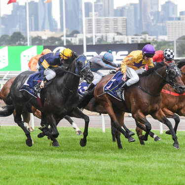 Online buying at Karaka bodes well for NZ Bloodstock