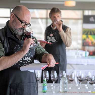 Tasting notes on the winners of the New World Wine Awards
