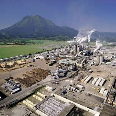 Power costs to feature in Tasman mill review