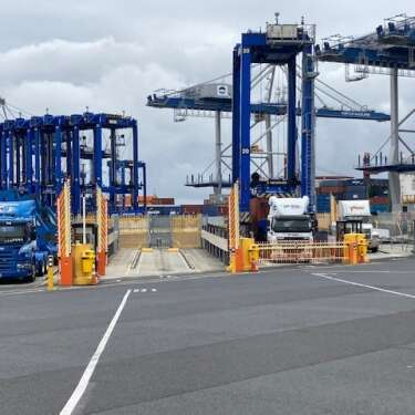 Ports of Auckland forgoes interim dividend as congestion bites