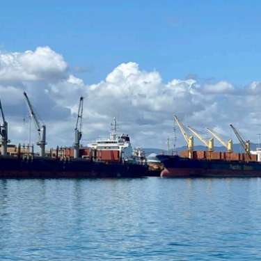 Port of Tauranga 1st-qtr cargo down 5%