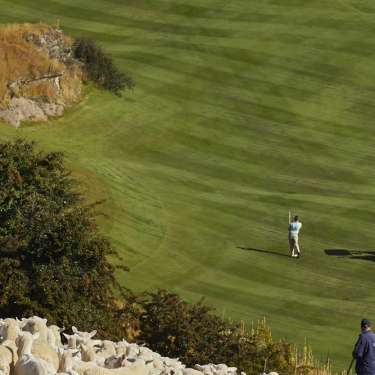 A Queenstown property on a golf resort, sheep included