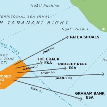 Seabed mining bid lays bare EEZ Act flaws