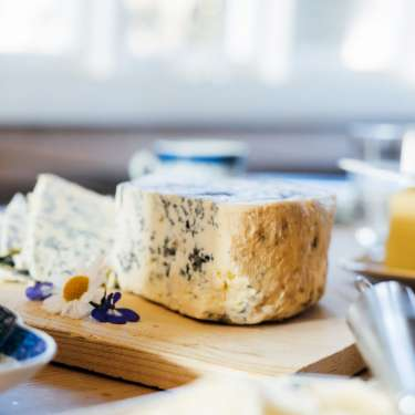 Get cultured - welcome to fromage 101, our new cheese column