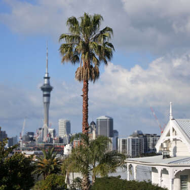 RBNZ is responsible for rising house prices
