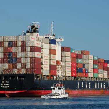 Flying kiwi hitting export returns