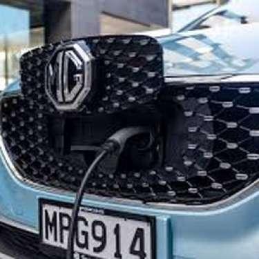 Govt's 2025 carbon free target unreachable for vehicle fleet