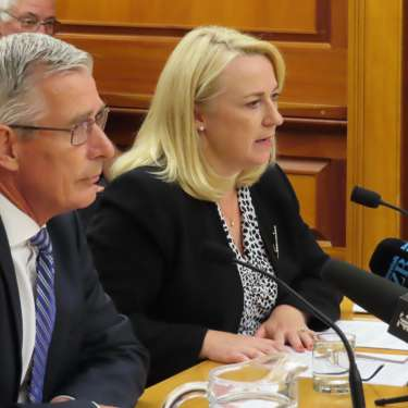 Revamped govt credit line gives Air NZ capital raise options: Foran