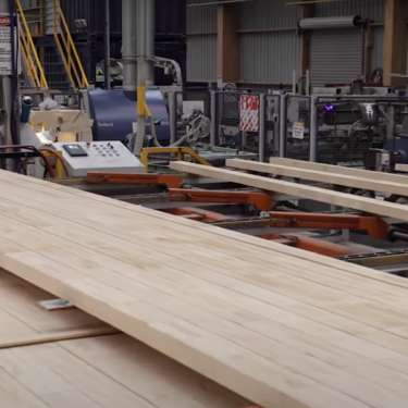 Kāinga Ora may be key to timber woes – Red Stag