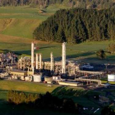 Vital role for NZ's biggest gas user in climate transition