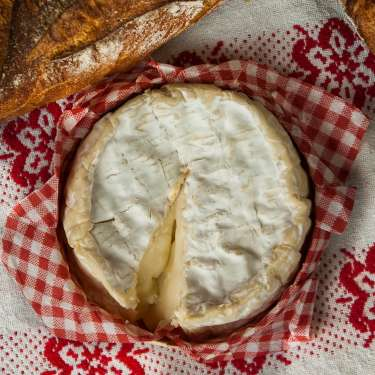 Get cultured - what you need to know about the seven types of cheese
