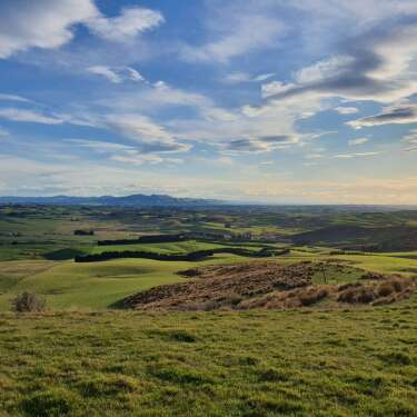 Pre-Christmas IPO for NZ Rural Land Co