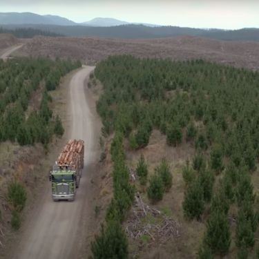 MPs move to prevent forestry price controls