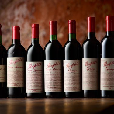 Wine with bottle - an embarrassment of riches goes under the hammer